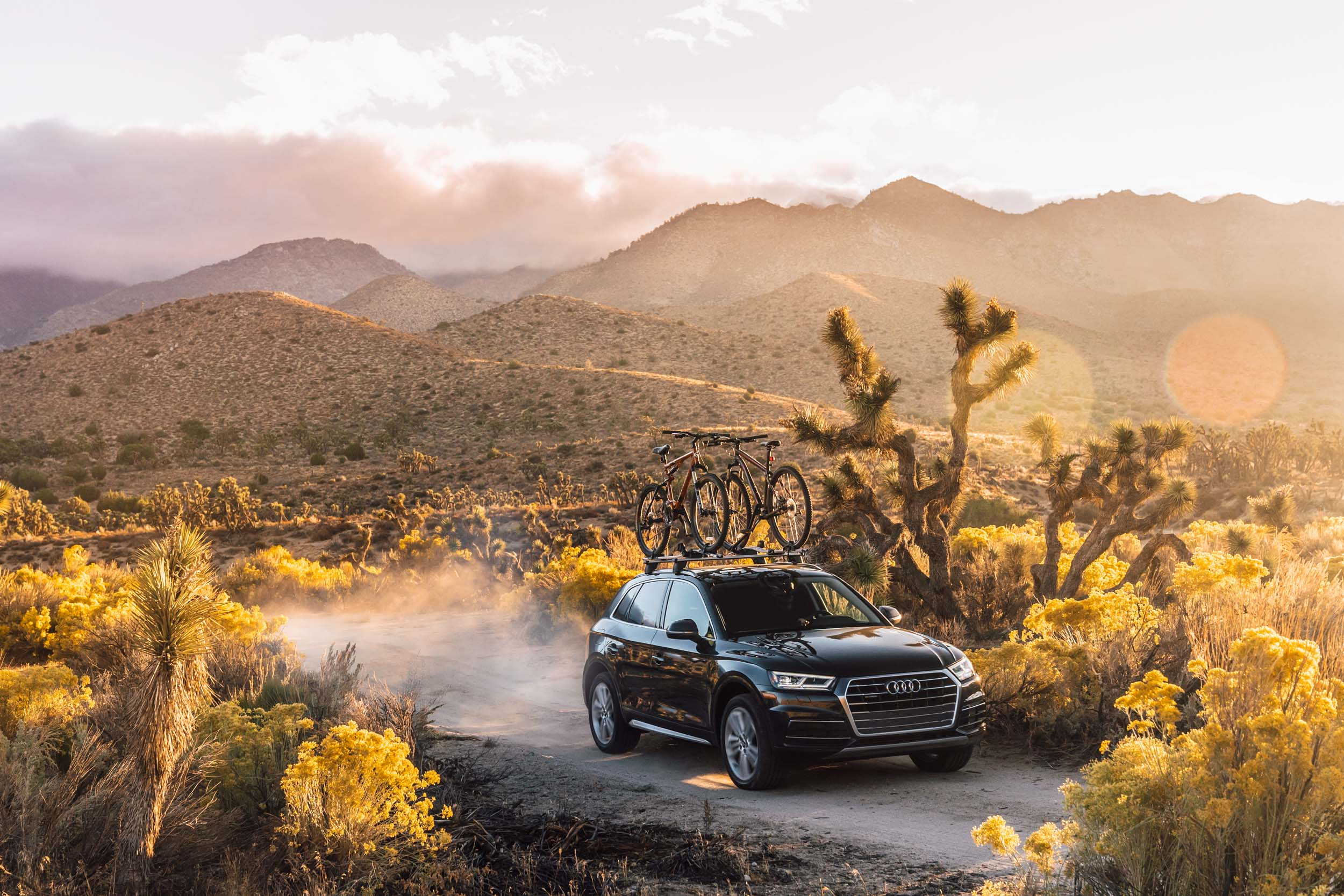 Black Audi Q5 driving down dusty desert road with Joshua trees and mountains