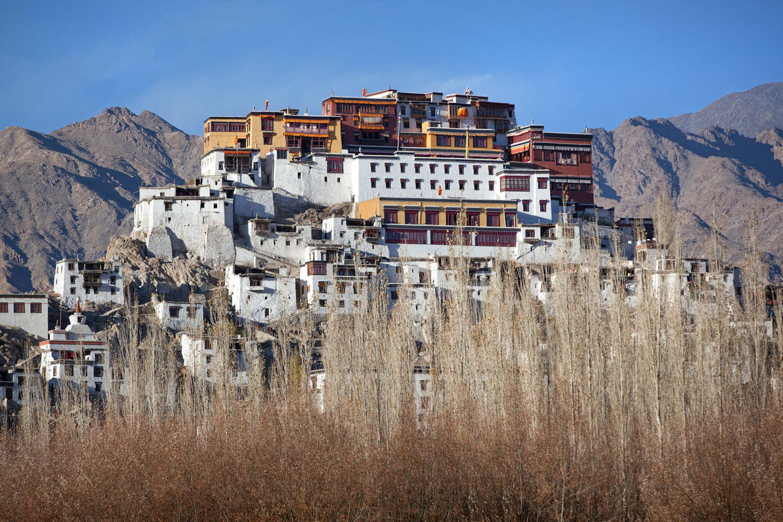 Travel-India-Ladakh-Leh-Thiksey-Buddhist-Monastery-2