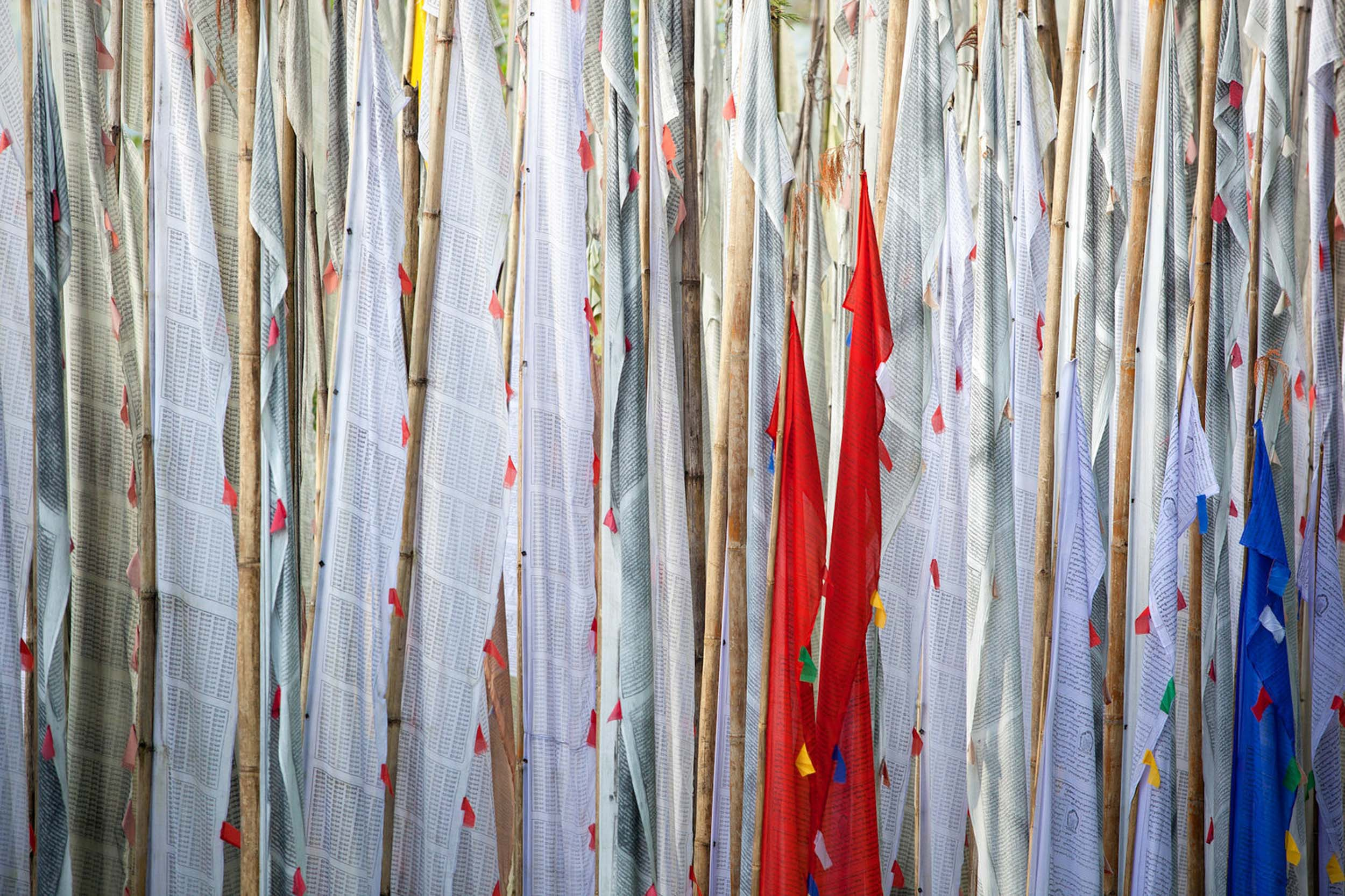 Travel-India-Sikkim-Tashiding-Monastery-Prayer-Flags